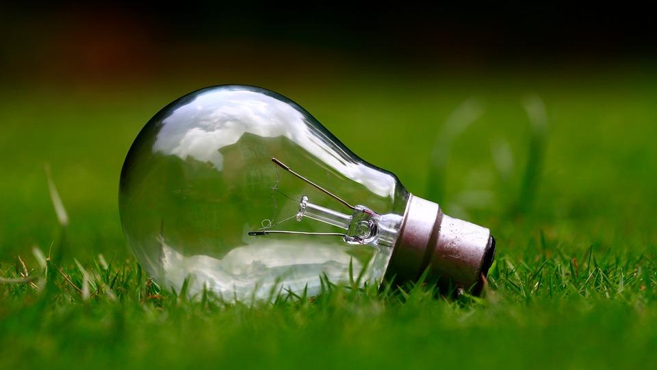 žiarovka na tráve